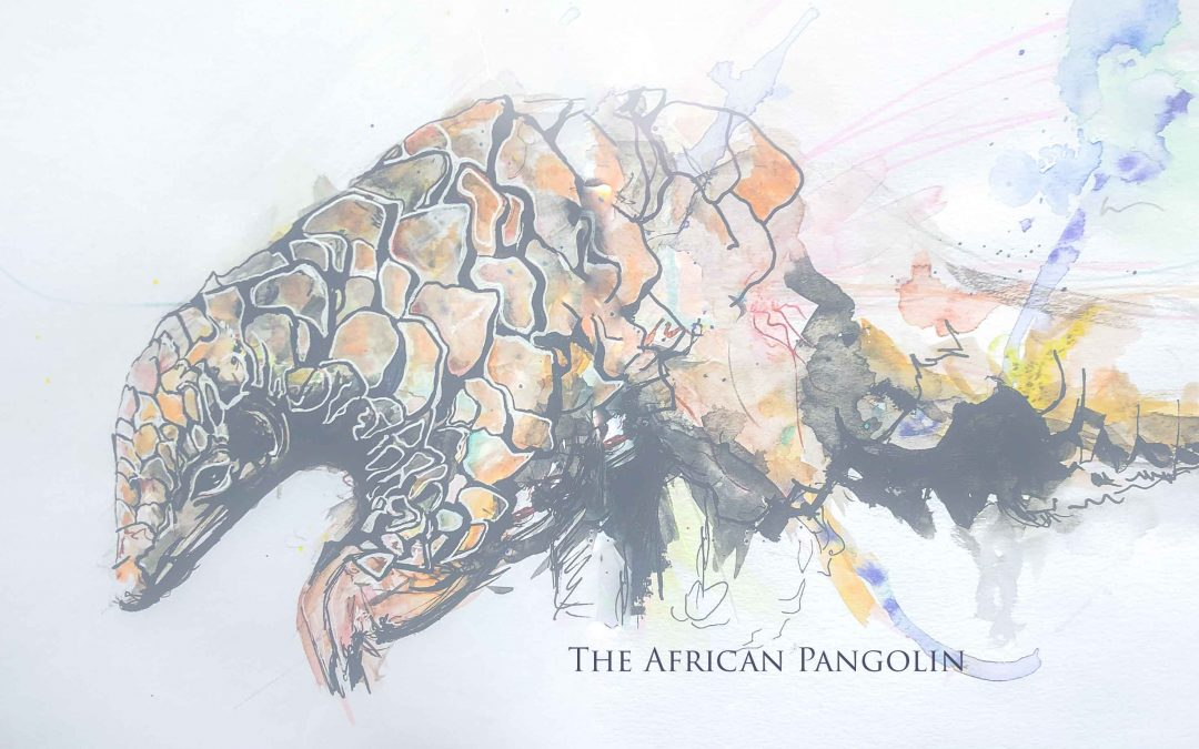 The Magical Pangolin